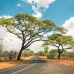 tour guiado por oloolua nairobi
