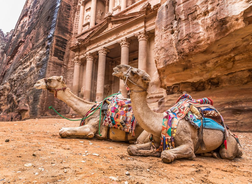 Local city guide in Amman by hours or tailored tours by the city