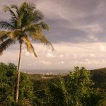 naturaleza paraguaya visita chaco asunción