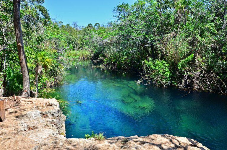 tour por cenote dos canc�n