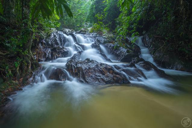 scopri la natura malese: kuala lumpur