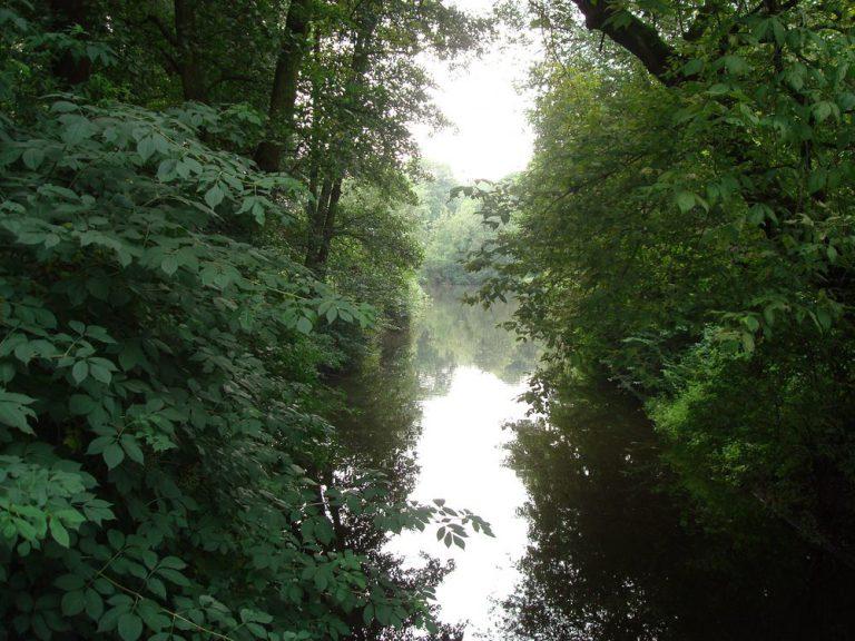 hidden gardens   amsterdam